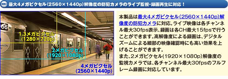 最大4メガピクセル(2560×1440p)解像度の防犯カメラのライブ監視・録画再生に対応!